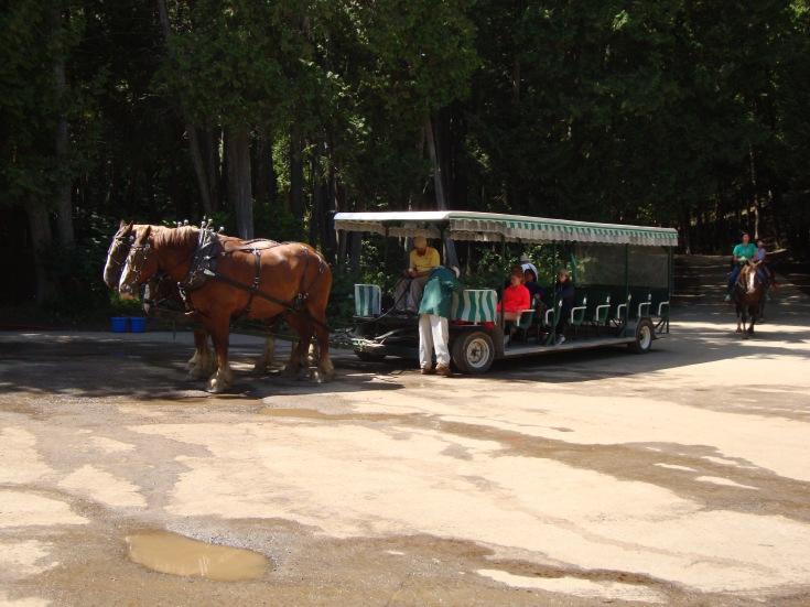 Carriage Ride on Mackinac Island
