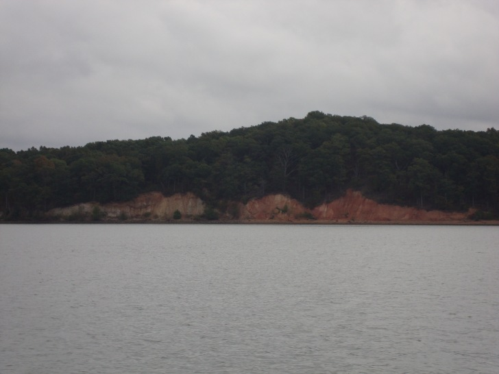 Typical river bank picture along Kentucky Lake.
